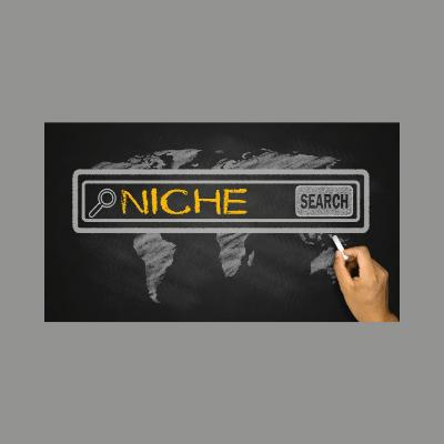 Nischensuche + Domainwahl